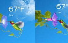 Animated Hummingbird Weather for Rainmeter